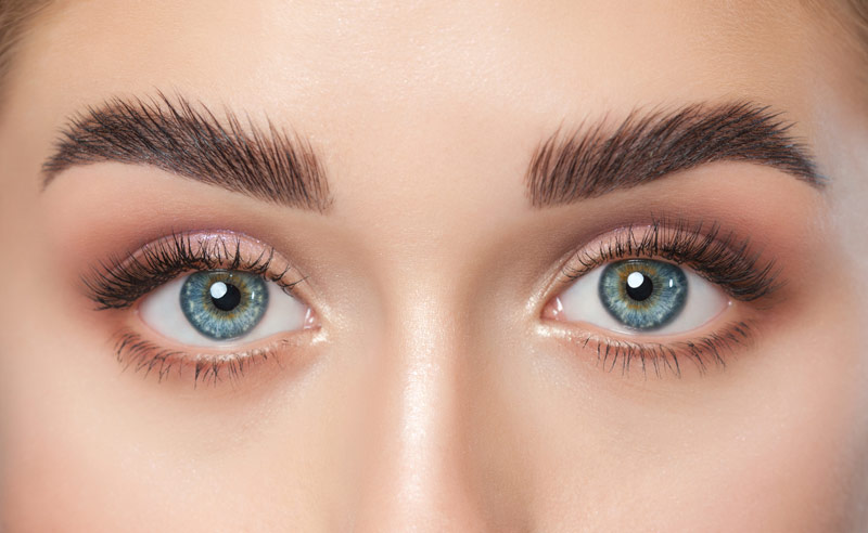 Formation Expert Brow LIft & Shape